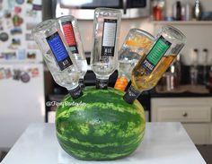 triple sec rum tequila vodka refrigerators island ice parties alcohol ...