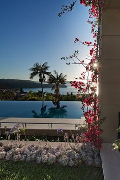 Pool with Bougainvillea.jpg by William Dangar & Associates, via Flickr