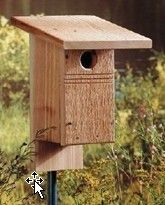 Free Do It Yourself Bird House Plans