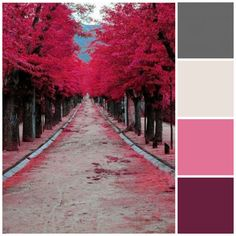 Fall color palette: Plum, pink and gray