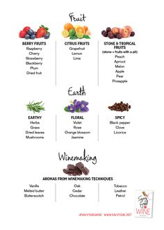 Wine Aromas: Just Remember To Think of a F.E.W. Smells