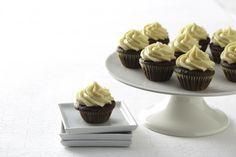 Ghirardelli Chocolate Cupcakes with Pumpkin Frosting