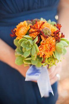 naturals plus orange and blue