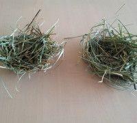 samen nestjes van gras maken> kleuterklasse.nl
