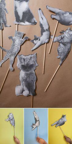 Cat Party / Kitties on sticks - @blakelybrown