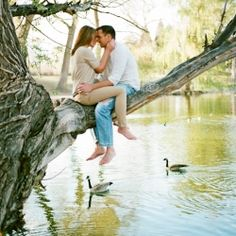 Up in a tree. Over the water. Gorgeous natural engagement. Beautiful light.    Reminds me of the little spot we found that we want to take some photos at:)