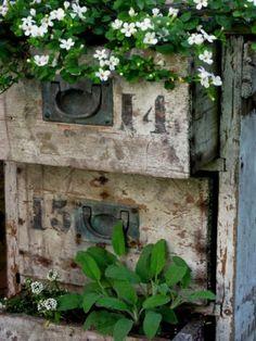 Repurposed crates for flower beds  ZsaZsa Bellagio: Ahhh, Lovin' Life!
