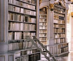 amazing bookshelves books, home libraries, dreams, bookcas, dream library, hous, shelv, beauty, the beast