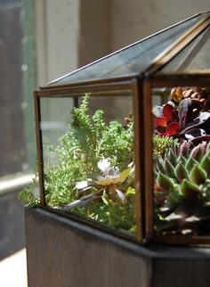 Love this idea! Recycled fixture planters. #planters #gardening #indoor gardening #diy