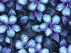 imagenes  | Fondos de Flores imagen Hermosas Flores