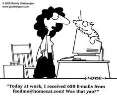 Cat humor ;-) | via @SparkPeople #funny #cartoon #cats #pets