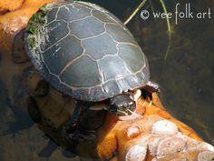FREE complete Waldorf Preschool Summer curriculum! Puddles and Ponds Preschool/Kindergarten Curriculum | Wee Folk Art