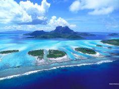 Beautiful Look On Reefs Bora Bora Beach