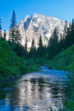 Along Granite Creek in the Cabinet Mountains Wilderness, Montana