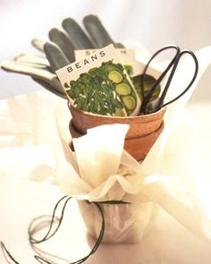 Gift garden. Spring is on its way…so they say. Great idea for the green thumb friend.