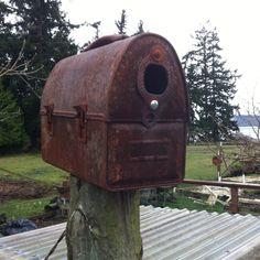 Rusted lunchbox birdhouse, The Farmhouse B & B, Whidbey Island