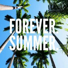 Forever Summer #summer #palmtrees #SwimSpot