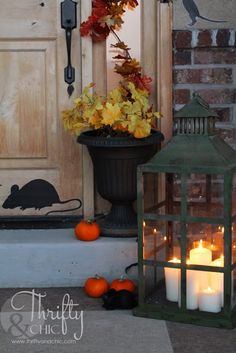 Halloween Decorating Ideas for porch