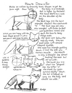 How to Draw A Fox Worksheet, Project notes at the blog. http://drawinglessonsfortheyoungartist.blogspot.com/2013/02/how-to-draw-fox-worksheet.html