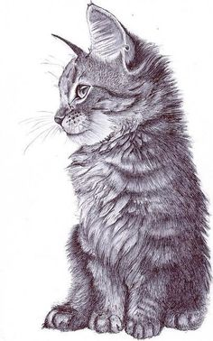 #illustration #drawing #art | http://3dcharacterscollections.blogspot.com