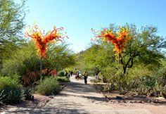 Chihuly Art in the Desert Garden #Chihuly #garden
