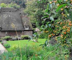 Rural cottage garden
