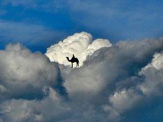 clouds, news, art, camel heaven, camels, blog, photograph imagin, imagin cloud