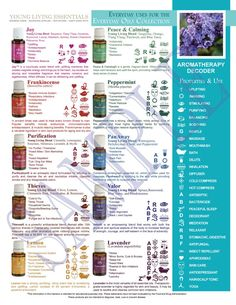 NEW Printable Young Living Handout - Everyday Uses for the New Everyday Essential Oils Collection including JOY! www.ylscents.com/drcatherine