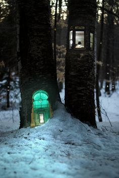 """Miniature Homes In Trees Perfect for Tiny People and Elves - 21 year old illustrator Daniel Barreto carved these small dwellings into the nooks and crannies of trees deep in the woods. Their windows glowing with light and flickering in the dark snowy night beg the question """"who built this house and how do they exactly live here."""""""