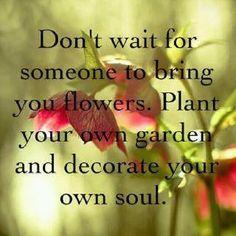 plant your own garden...
