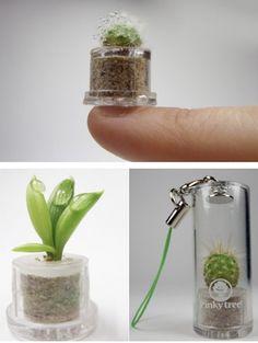 #wedding #favors #plant #green #earth
