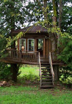 treehous design, cabin, idea, dream homes, backyard treehouses, tree houses, guest houses, kid treehous, amaz tree