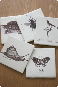 DIY coasters-- print vintage printables onto tracing paper & modpodge onto tiles