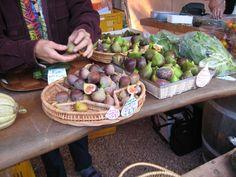 matakana figs