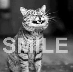 Just SMILE.
