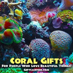Coral Gifts for Peop