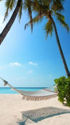 Life is good on the beach