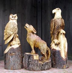 chainsaw carving  Tree Wood Carvings  good visual of stump sizes.  carved owl, carved wold, carved eagle