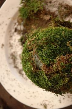 How to make DIY moss balls with stryofoam balls and craft store moss
