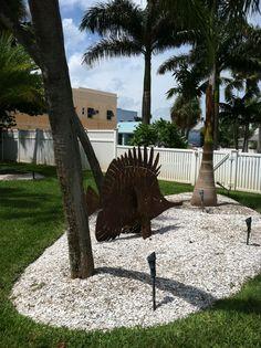 More Florida landscape