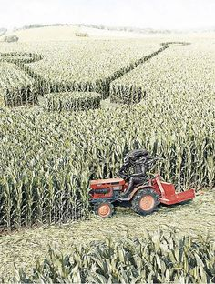 How crop circles are made.