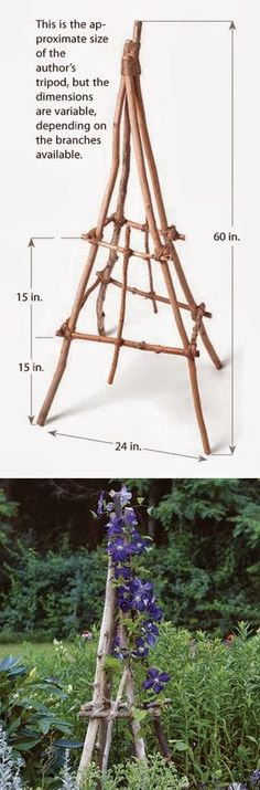 How to build a rustic branch twig tuteur altern gardn, garden tuteur, twig tuteur, twigs branches, grow, rustic branch, branch twig, build, diy