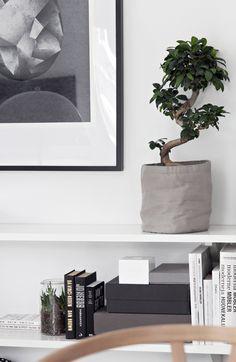 Greenery, customized bookshelf