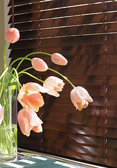 I want wooden blinds!  It's a moderately small expense with a big impact!