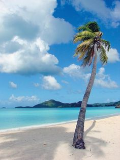 Valley Church Beach, Antigua, by Ernest Gaydos