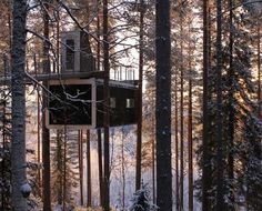 Tree-Top Hotel Room by Swedish architects Cyrén & Cyrén