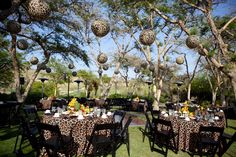 Animal print lanterns are a fun way to add decor to any wedding event! Check out one of our beautiful reception set ups at the San Diego Zoo Safari Park. Yes, we do weddings!