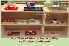 Bug Themed Fine Motor Shelf at Trillium Montessori