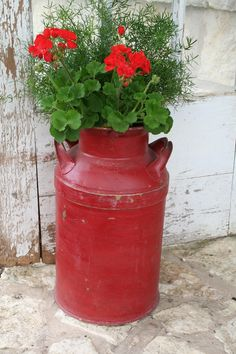 Red milk can planted with Geraniums.  I have a cream can....I think I need to do this.