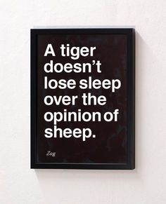 A tiger doesn't lose sleep over the opinion of sheep. lion, food for thought, animals, remember this, quotes, breakfast, sheep, tigers, sleep